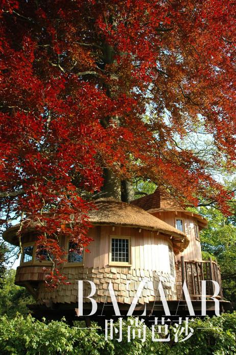 英国Surrey,神秘花园里奢华的童话式树屋城堡。